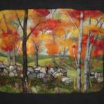 Autumn in Amherst